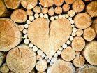 heart-1288420__480