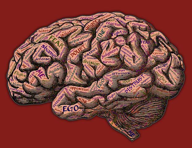mind-2197437__480