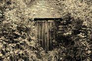 secret-garden-2413804__480