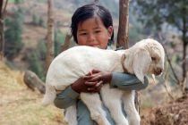 Nepal-Lamb and child