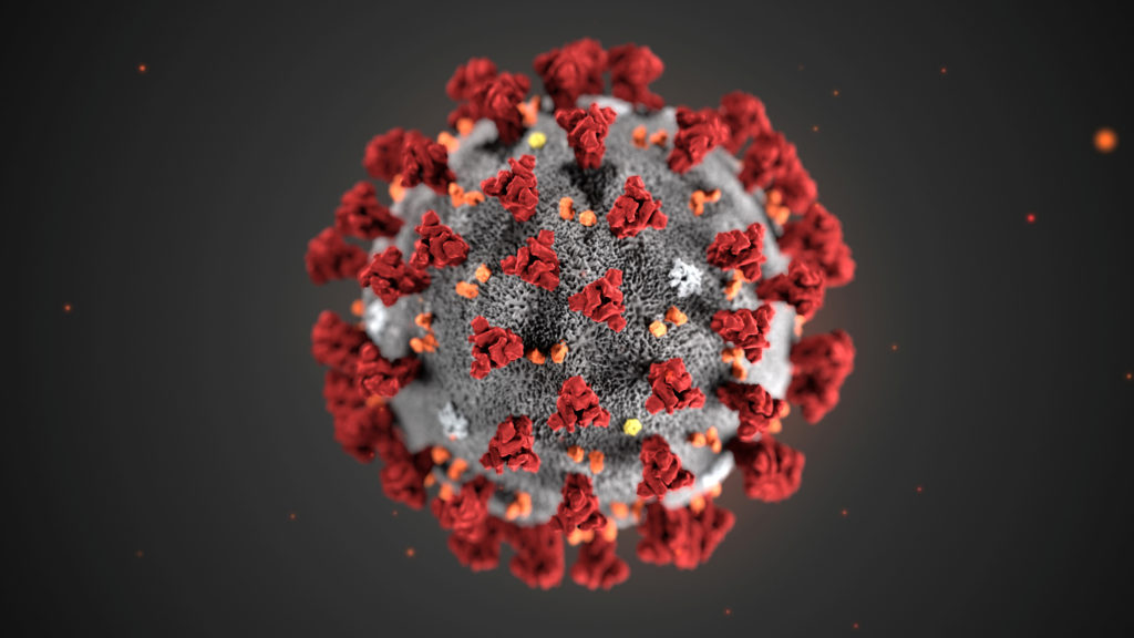 An illustration, created at the Centers for Disease Control and Prevention (CDC), depicts the 2019 Novel Coronavirus