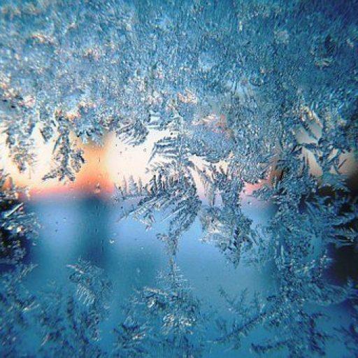 cropped-frost.jpg